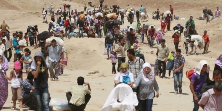 'Radestkirina Şengalê yek ji komployên li ser gelê Kurd bû'