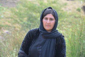 كوردستان ئەسعەد